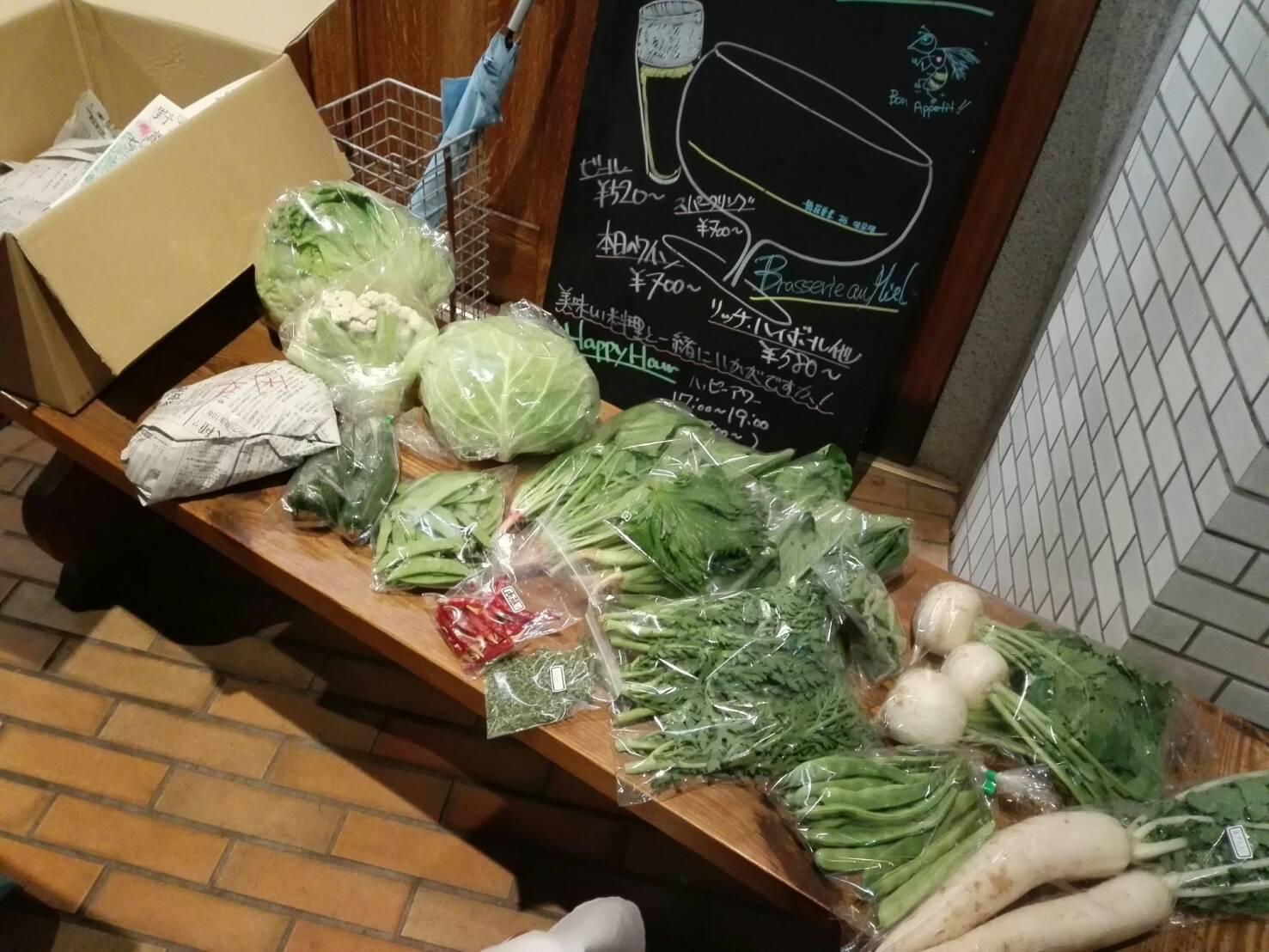 無農薬野菜、入荷しました。